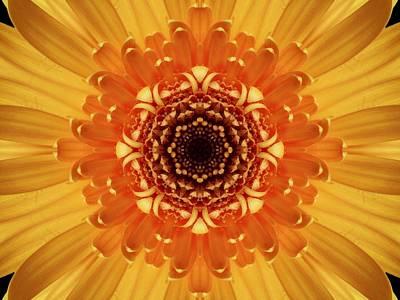 Digital Art - Marigold  Kaleidoscope by Nancy Pauling