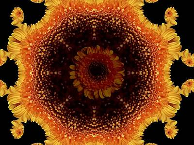 Digital Art - Marigold  Roundel by Nancy Pauling