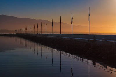 Photograph - Marina Flags by Thomas Hall