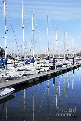 Photograph - Marina Moorings by Wendy Wilton