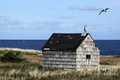 Photograph - Maritime Cottage by PJ Boylan