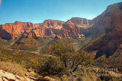 Photograph - Markaqunt  Mesa In Kolob by Robert Bales