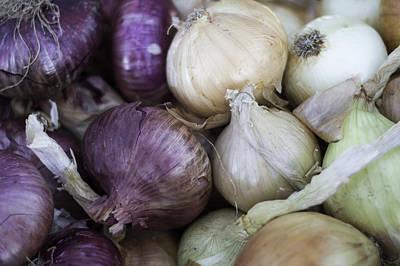 Photograph - Market Onions by Cathie Richardson