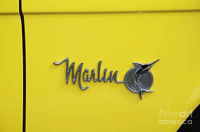 Photograph - Marlin Logo by Brenda Kean