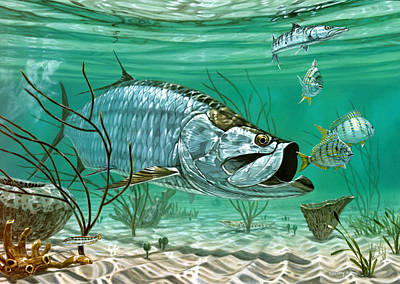 Fish Underwater Painting - Marquesas Keys Tarpon by Don  Ray