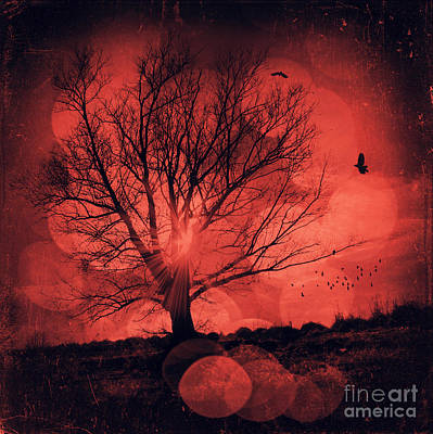 Licht Wall Art - Photograph - Mars Tree by Dirk Wuestenhagen