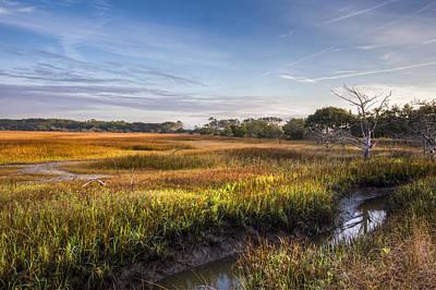 Photograph - Marsh At Jekyll Island by Debra and Dave Vanderlaan