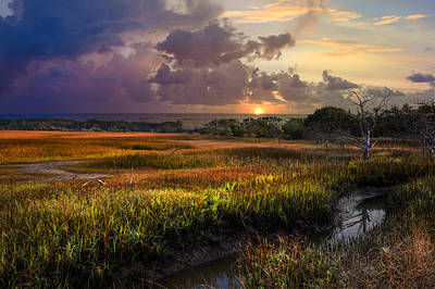 Photograph - Marsh At Sunrise by Debra and Dave Vanderlaan