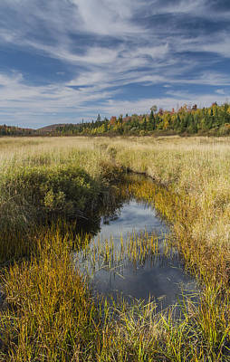 Vermont Wilderness Photograph - Marsh Autumn Vermont Reflections Sky Clouds by Andy Gimino