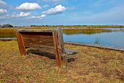 Photograph - Marsh And Bench by Denise Mazzocco