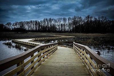 Photograph - Marsh Boardwalk Lake St Clair Metropark  by Ronald Grogan
