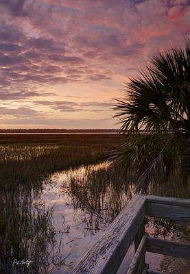 Lowcountry Marshes Photograph - Marsh Dock by Phill Doherty