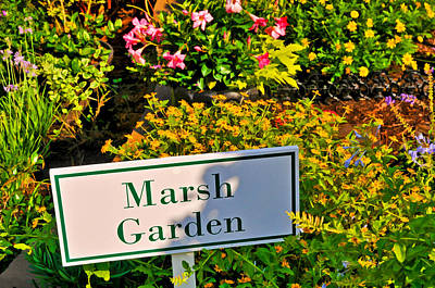 Photograph - Marsh Garden Sign And Flowers by Ginger Wakem