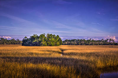Wetlands Photograph - Marsh Hammock by Marvin Spates