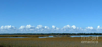 Photograph - Marsh In Panacea Florida by Audrey Peaty