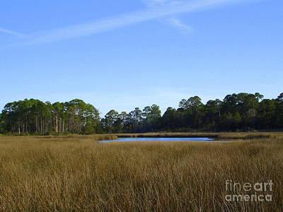 Photograph - Marsh Lake by Lew Davis