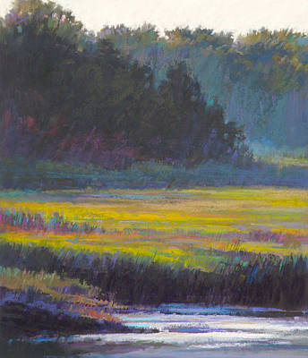 Wall Art - Painting - Marsh Land by Ed Chesnovitch