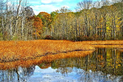 Marshes. Brooks Photograph - Marsh Land by Frozen in Time Fine Art Photography