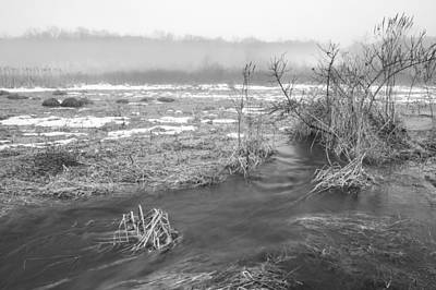 Photograph - Marsh Thaw by Sara Hudock