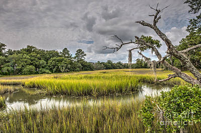 Photograph - Marsh Walk by Dale Powell