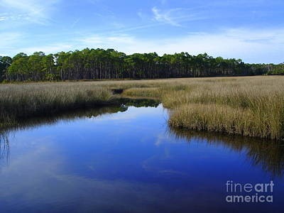 Photograph - Marsh Water Creek by Lew Davis