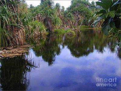 Photograph - Marshall Islands Lake by Lew Davis
