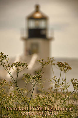 Digital Art - Marshall Point Lighthouse by Patrick Groleau