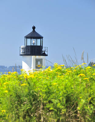 Photograph - Marshall Point Lighthouse And Field Of Goldenrod  by Marianne Campolongo