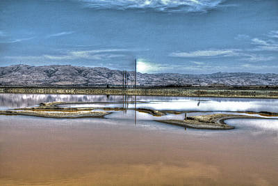 Photograph - Marshlands by SC Heffner