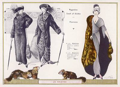 Otter Drawing - Marten Fur Cloak & Ermine Hat by Mary Evans Picture Library