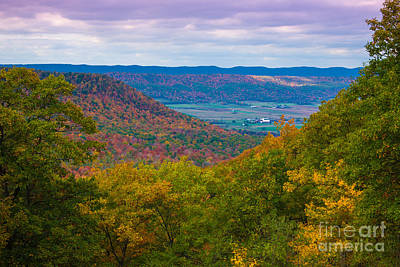 Photograph - Martin Hill Foliage by Ronald Lutz