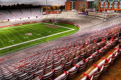 Photograph - Martin Stadium On The Wsu Campus by David Patterson