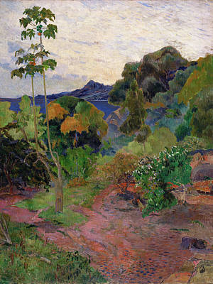Post-impressionist Photograph - Martinique Landscape, 1887 Oil On Canvas by Paul Gauguin