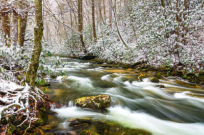 Martins Fork Winter Art Print by Anthony Heflin