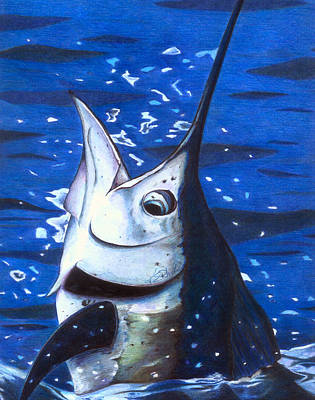 Marvin Sailfish Art Print