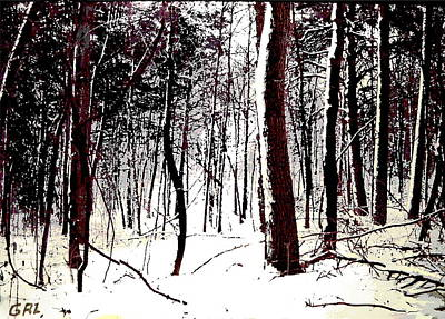 Painting - Maryland Winter Forest 2c Original Digital Art by G Linsenmayer