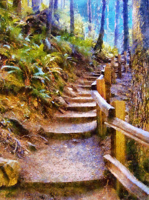 Digital Art - Marymere Falls Trail by Kaylee Mason