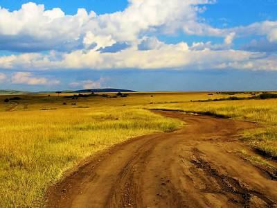 Photograph - Masaai Horizon by David Rich