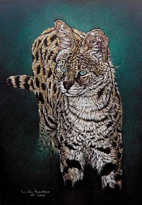 Pastel Pencil Drawing - Masaai by Linda Becker