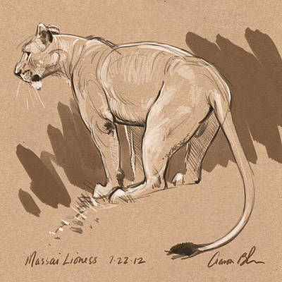 Drawing Digital Art - Masai Lioness by Aaron Blaise