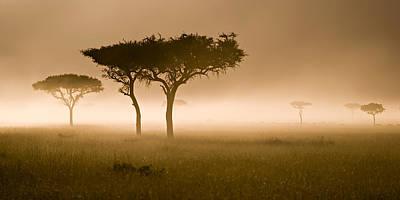 Photograph - Masai Mara #2 by Antonio Jorge Nunes
