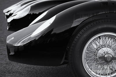 Photograph - Maserati Lineup by Dennis Hedberg