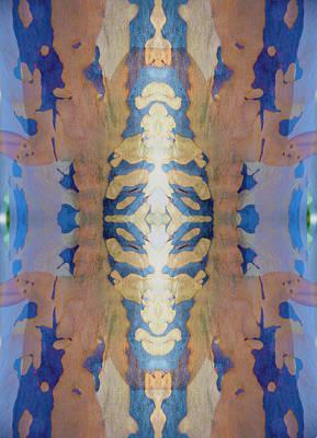 Photograph - Mask Of Blue Eucalyptus by Deprise Brescia