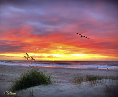 Art Print featuring the photograph Masonboro Inlet Sunrise by Phil Mancuso