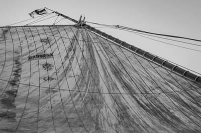Water Skippers Photograph - Mast And Sail I by Marco Oliveira
