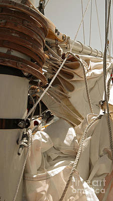 Sailboats Photograph - Mast Hoops by Jani Freimann
