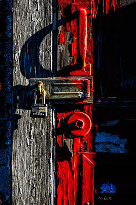 Photograph - Master Of The Old Red Barn by Bob Orsillo