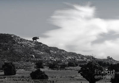 Painting - Mastodon On A Hill - 02 by Gregory Dyer
