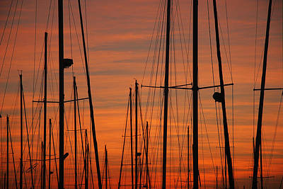 Masts At Sunset Art Print