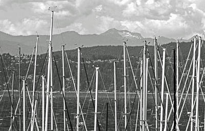 Photograph - Masts Bw by Laurie Tsemak